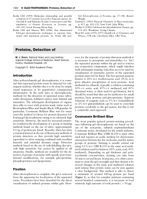 Proteins Detection of