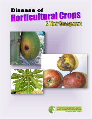 Disease of Horticultural Crops and Their Management