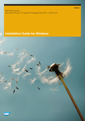 Installation Guide for Windows